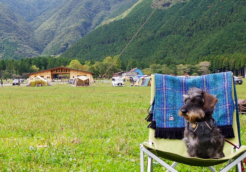 犬連れ朝霧高原。愛犬と楽しむふもとっぱらキャンプ場と白糸の滝巡り。