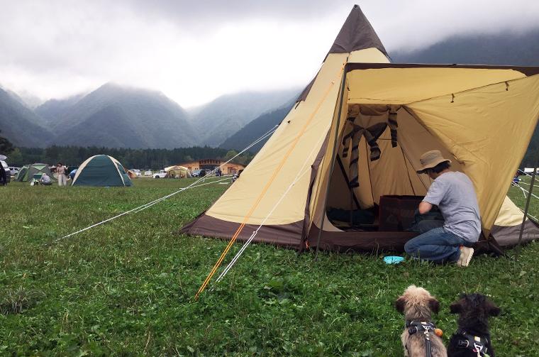 ふもとっぱらキャンプ場でテントを設営中。ワンコはお散歩待ち!