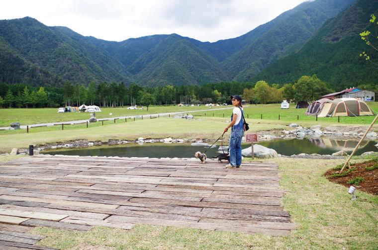 ふもとっぱらキャンプ場にできた可愛い池のあるロケーション。ワンコも楽しそう!