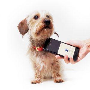 NFC迷子札PawBellの使い方