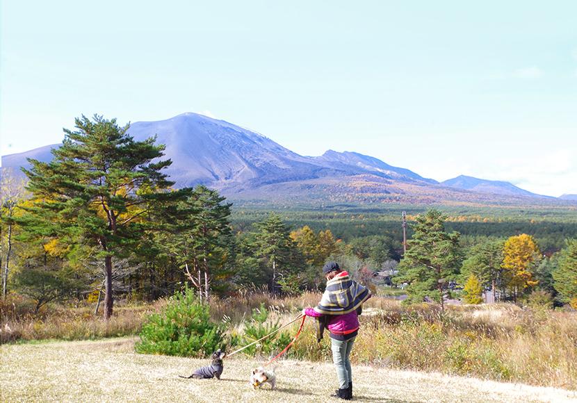 犬連れ軽井沢。浅間山の大自然を感じるスイートグラスキャンプと紅葉を巡る旅。